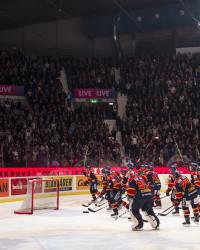 Djurgården tackar av fansen. Foto: Simon HastegŒård / Bildbyrån