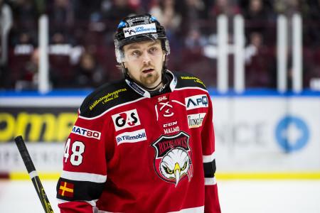 Mattias Elfström i Malmö Redhawks. Foto: Petter Arvidson / BILDBYRÅN