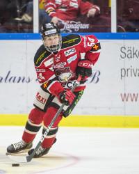 Marcus Sylvegård i Malmö Redhawks. Foto: Christian …Örnberg / BILDBYRÅN